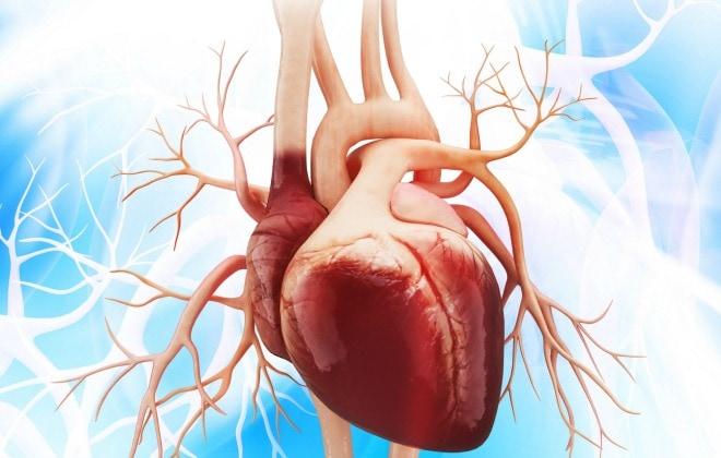 Verpleegkundige zorg bij hartfalen nursing for Prognose hartfalen