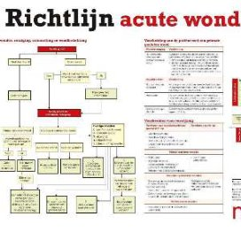 Download de Nursing-poster acute wondzorg