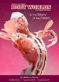 Bodyworlds Story of the Heart